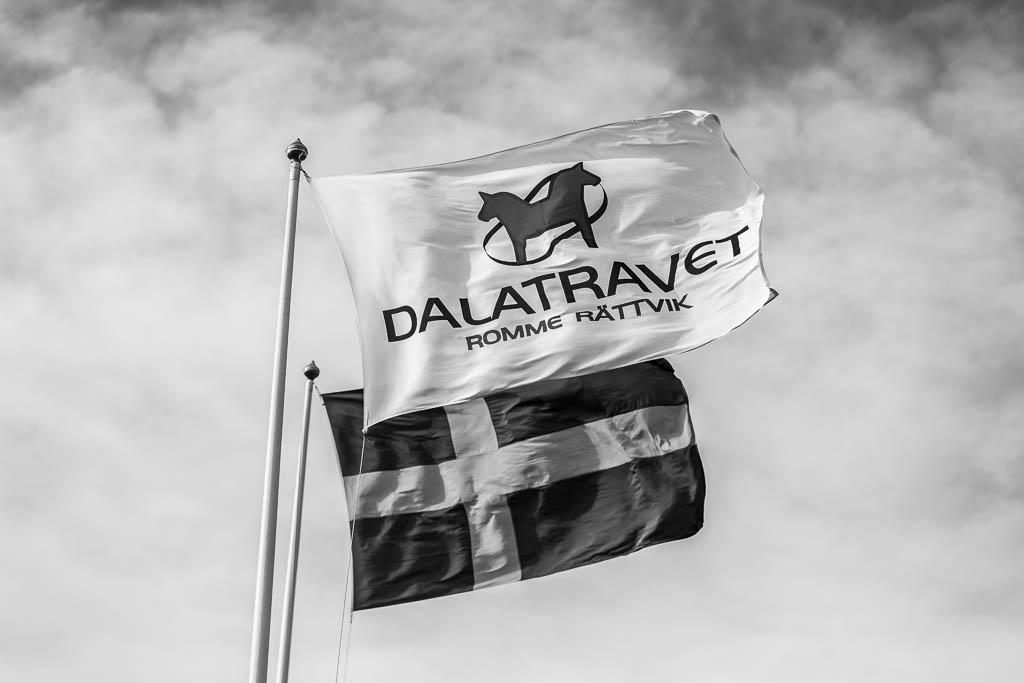 Den svenska flaggan och Dalatravets flagga står rakt ut i vinden.